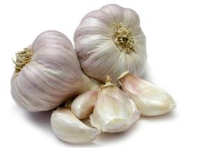 aimil-Allium-sativum