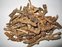 aimil-picrorhiza-kurroa